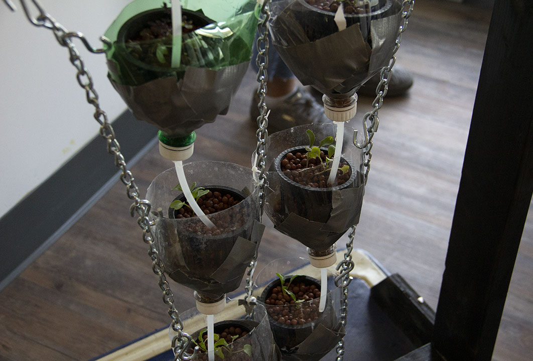 Self-sustaining hydroponics system made with recycled pop bottles.