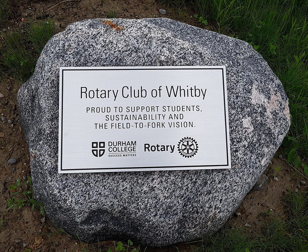 A plaque on a rock showing Rotary's support of Durham College.